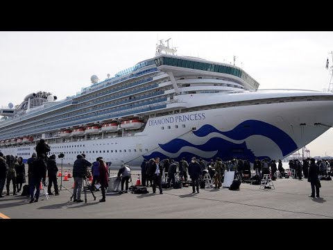 Virus Outbreak: Japan Finds 41 More Cases on Cruise Ship
