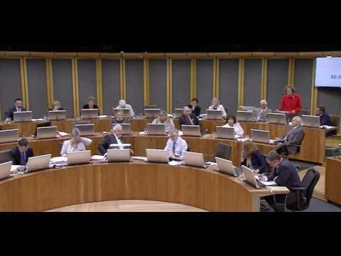 Michelle Brown AM - EU (Withdrawal) Bill Debate