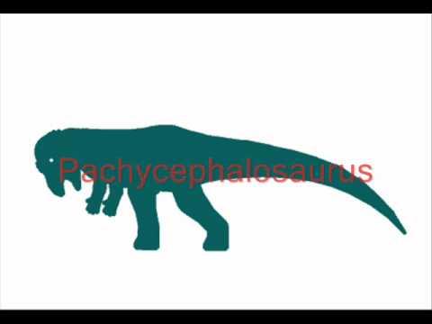 ASDC - Albertosaurus vs Pachycephalosaurus