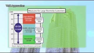 Beyond the Summer 2011 Power Crisis 1/3