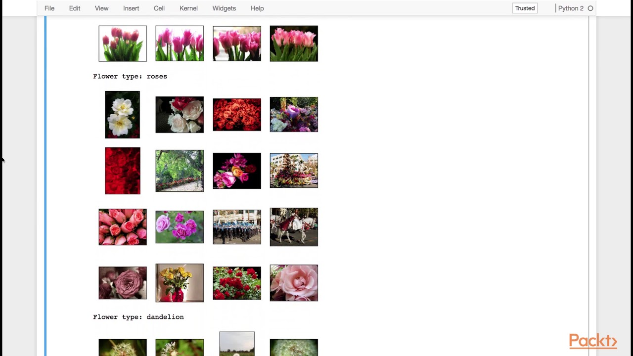 Advanced Computer Vision with TensorFlow : Loading and Exploring Flower  Dataset | packtpub com