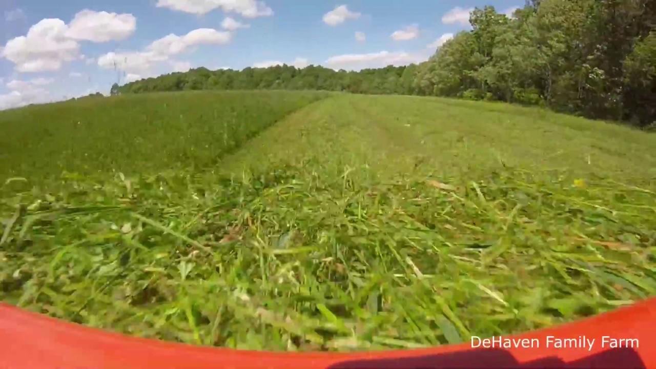 First Hay Down 2018! Kubota Discbine getting it done!!