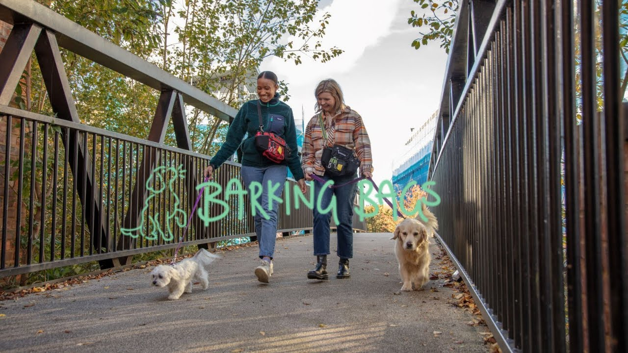Case Study - Barking Bags