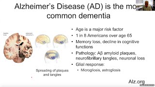 &quotInnate Immune Responses in Neurodegeneration&quot by Dr. Maco Colonna