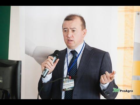Ж/д перевозки зерновых грузов. Андрей Мирошников, Укрзализниця