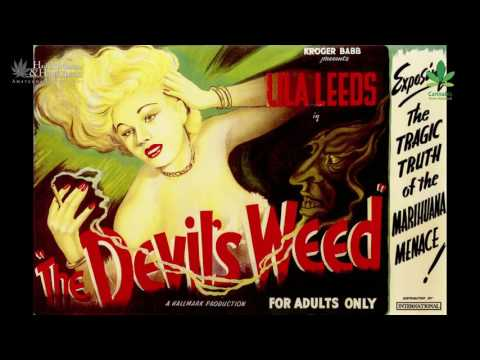 Did you know about Reefer Madness propaganda? | Canna History HD