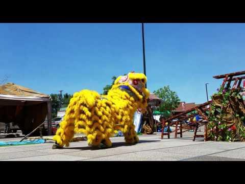 Colorado Asian Cultural Heritage Center Team A - CLDC 2017