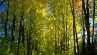 Nilüfer - Taa Uzak Yollardan