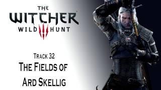 The Witcher 3 OST Fields of Ard Skellig