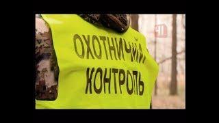 Охота на браконьеров в лесу / Новости