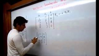 independencia lineal de vectores