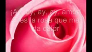 juan luis guerra te regalo una rosa letra mix