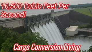 The Flood Gates Are Open/Cargo Conversion Living In The Pines