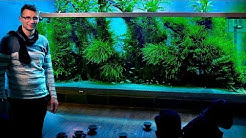 THE WORLD'S MOST FAMOUS PLANTED TANK - TAKASHI AMANO'S HOME AQUARIUM - JAPAN VLOG PART 2