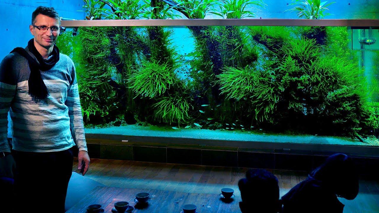 The World S Most Famous Planted Tank Takashi Amano S Home Aquarium Japan Vlog Part 2 Youtube