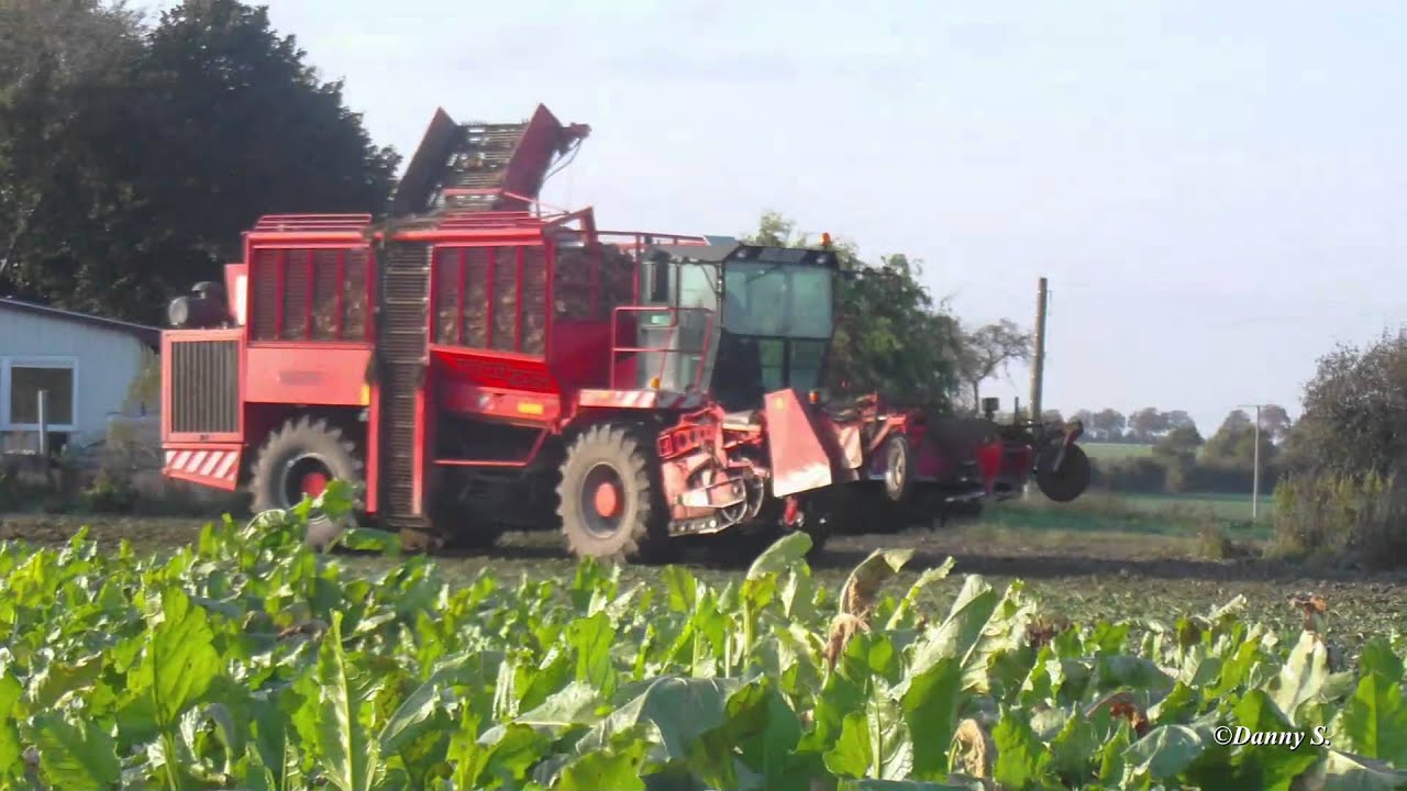 Mecklenburg Vorpommern Landwirtschaft