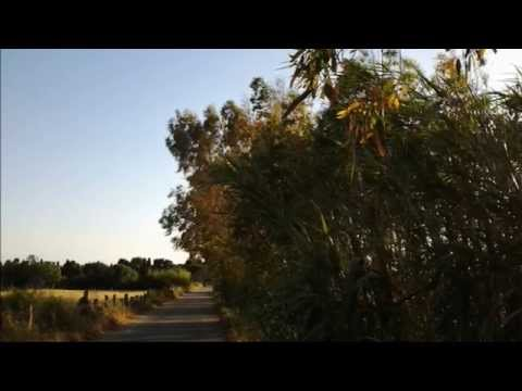 The SteelDrivers - When I'm Gone