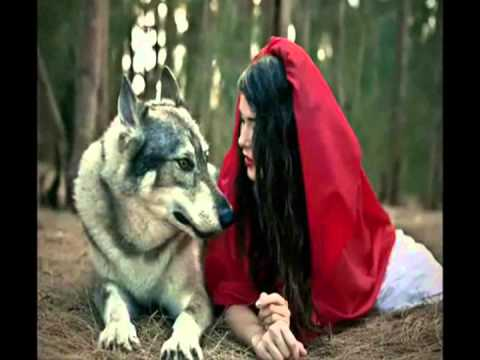 what is a wolf therian