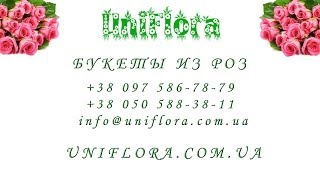 Купить букет из 21, 25, 45, 51, 55, 101 розы с доставкой(Букеты из роз: http://uniflora.com.ua/bouquet/bouquet-roses Большие букеты из роз: http://uniflora.com.ua/bouquet/bolshie-bukety-iz-roz Контакты: +38 097..., 2014-02-02T00:40:36.000Z)
