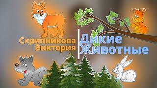Дикие животные леса для детей.  Лесные обитатели. Пальчиковая гимнастика. Видеозанятие для детей