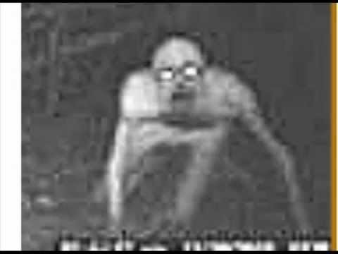 the most scariest things caught on camera ever - YouTube