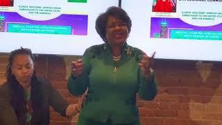 Africa Union Ambassador Dr. Arikana Chihombori-Quao in Chicago!!!