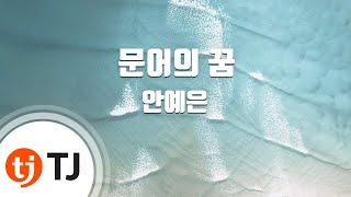 Download [TJ노래방] 문어의꿈 - 안예은 / TJ Karaoke