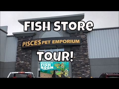Aquarium Fish Store Tour from Canada! Pisces Pet Emporium Ca