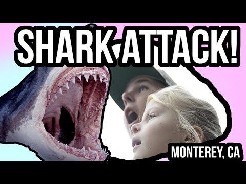 Monterey Bay Aquarium Vlog!