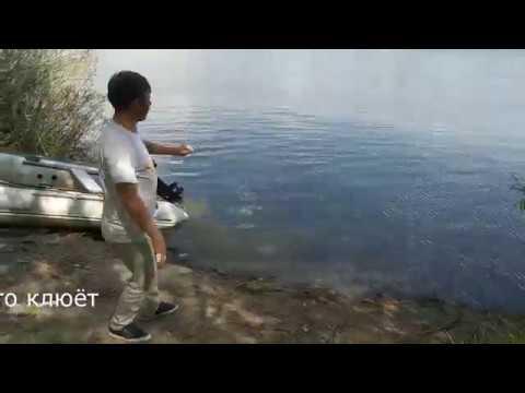 Рыбалка на Дону Ловля Донской селёдки на резинку  Шикарная майская природа