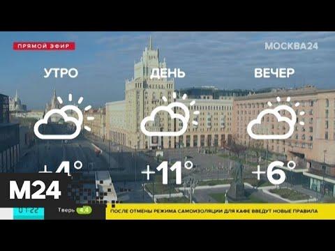 Солнечная погода ожидается в Москве в понедельник - Москва 24