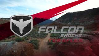 Falcon Shocks: The Big Reveal