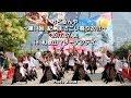 おどるんや~紀州よさこい祭り2017~マリーナシティ(2017.07.30)PhotoAlbum