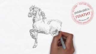 Как пошагово карандашом нарисовать лошадь  Как научиться рисовать лошадь(как нарисовать лошадь, как нарисовать лошадь поэтапно, как нарисовать карандашом лошадь, как нарисовать..., 2014-08-07T06:11:03.000Z)