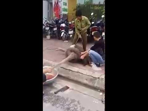 Làm thịt đà điểu giữa đường