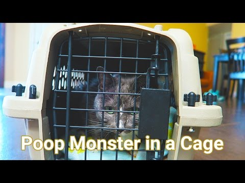 Poop Monster in a Cage