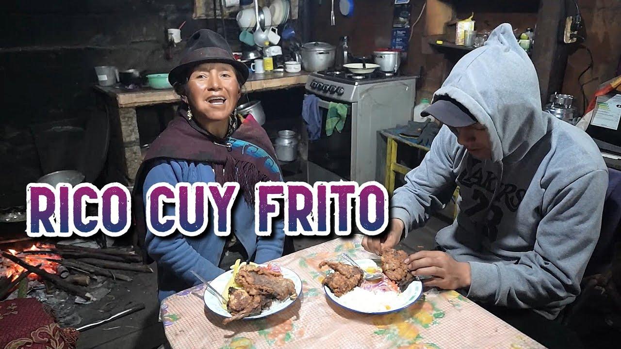 Download RICO CUY FRITO CON PAPITAS   Doña Empera