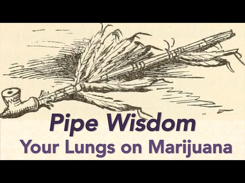 How Safe Are Your Lungs When You Smoke Marijuana?