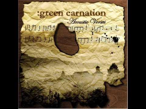 Green carnation alone