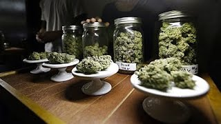 Recreational Vs Medicinal Marijuana. Washington Regulation Debate