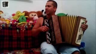 Владимир Бажиновский - Ветер Бродяга (Игра на баяне)