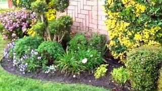 Клумбы и цветники на даче(http://sadikplan.ru/ Клумбы и цветники на даче, небольшой цветник, миксбордер. Это небольшой цветник у дверей у моей..., 2013-04-14T01:13:36.000Z)