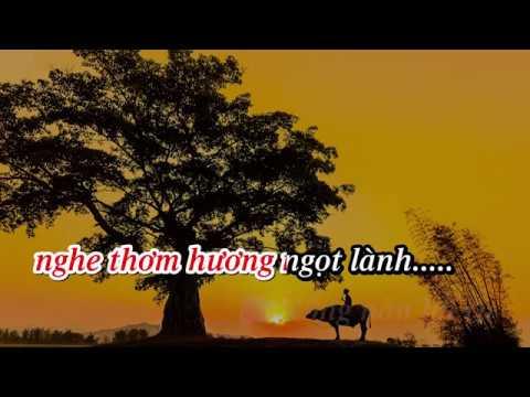 Karaoke Quê Mẹ | Beat Song ca chuẩn | Hữu Tuấn & Bùi Thị Thúy | Tống Thuận
