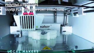 Ultimaker 3 Pt. 3 - First Print With PVA + Timelapse