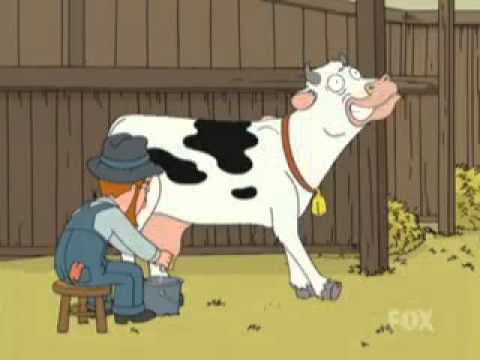البقرة كرتون