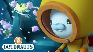 Octonauts - Exploring the Deep Depths of the Ocean | Cartoons for Kids | Underwater Sea Education