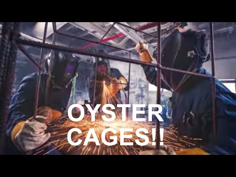 These kids are growing One Billion Oysters!!