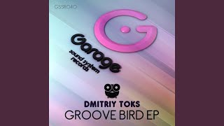 Groove Bird (Original Mix)