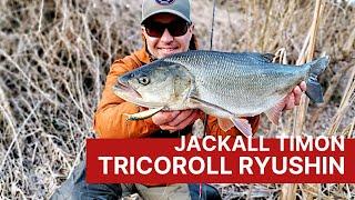 Jackall Timon Tricoroll Ryushin. Воблеры для ловли форели, голавля, жереха на течении