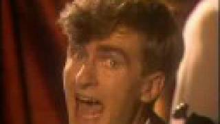 split enz i got you